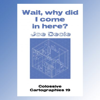 Wait, why did I come in here? by Joe Decie (Colossive Cartographies)